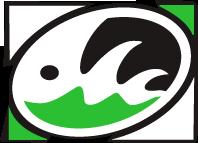 Logo Centro Windsurf 3Ponti Livorno