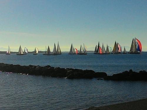 Partenza-Faros-Cup regata-CNC