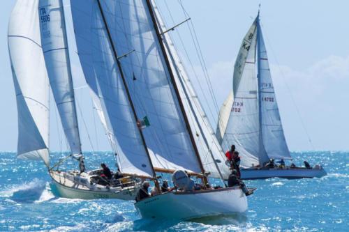 SVI 19 VS 0462 Marco Trainotti